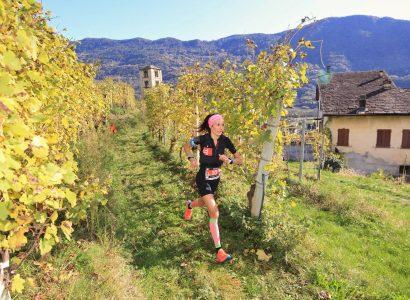 Valtellina Wine Trail, un'edizione illuminata dal sole 5